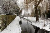 Winter Scene Nuns Walk Winchester
