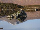 Mirror Image Rannock Moor