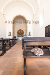 Nossa Senhora da Grace Church 1579