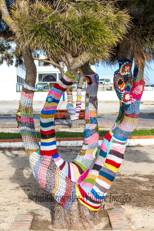 Decorated Trees in Sagres Portugal