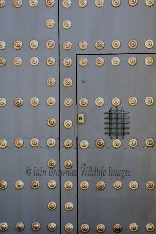 Door in Saville