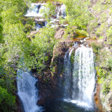 northern territory - litchfield national park