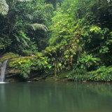 brunei - labi falls