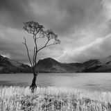 Buttermere, 2012