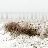 Ribblehead Viaduct #6