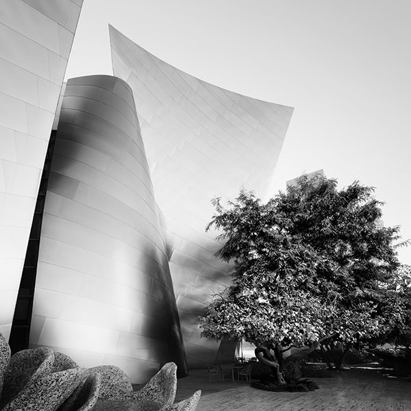 Walt Disney Concert Hall, Los Angeles #5