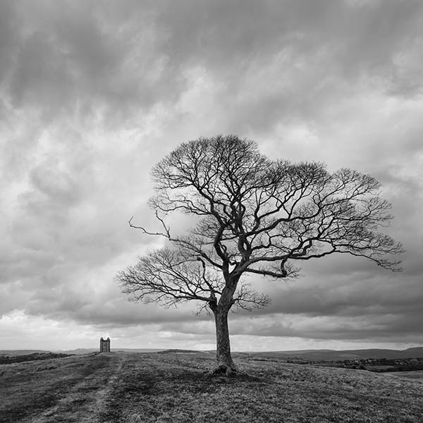 The Cage, Lyme Park