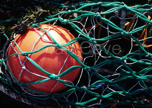 Bouy and net