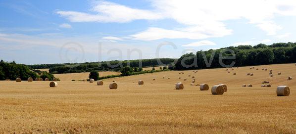 Straw bails, Fullwell, Oxfordshire