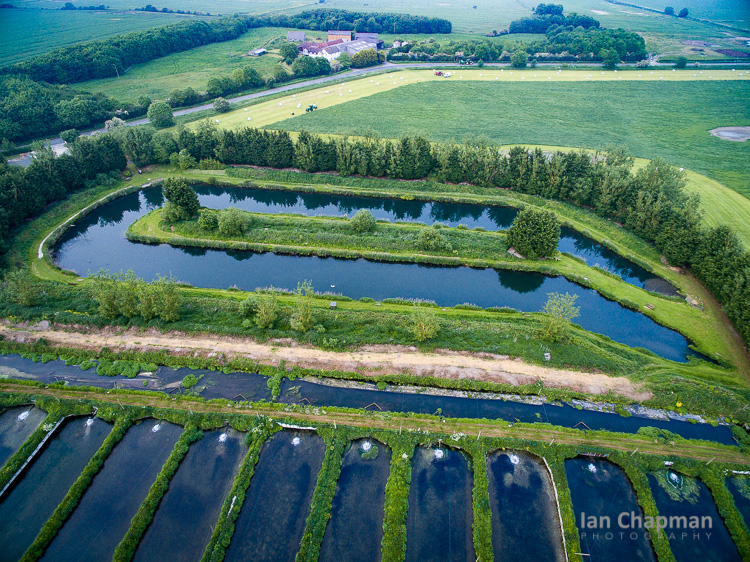 Trout fishery and fish farm