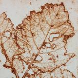 Autumn Leaf - Collagraph print