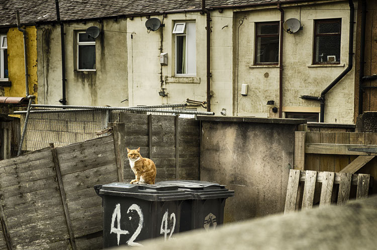Back Alley Accrington