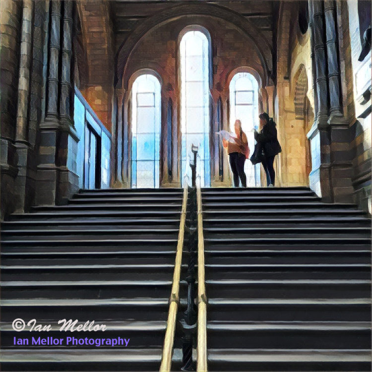 Natural History Museum, main stairs