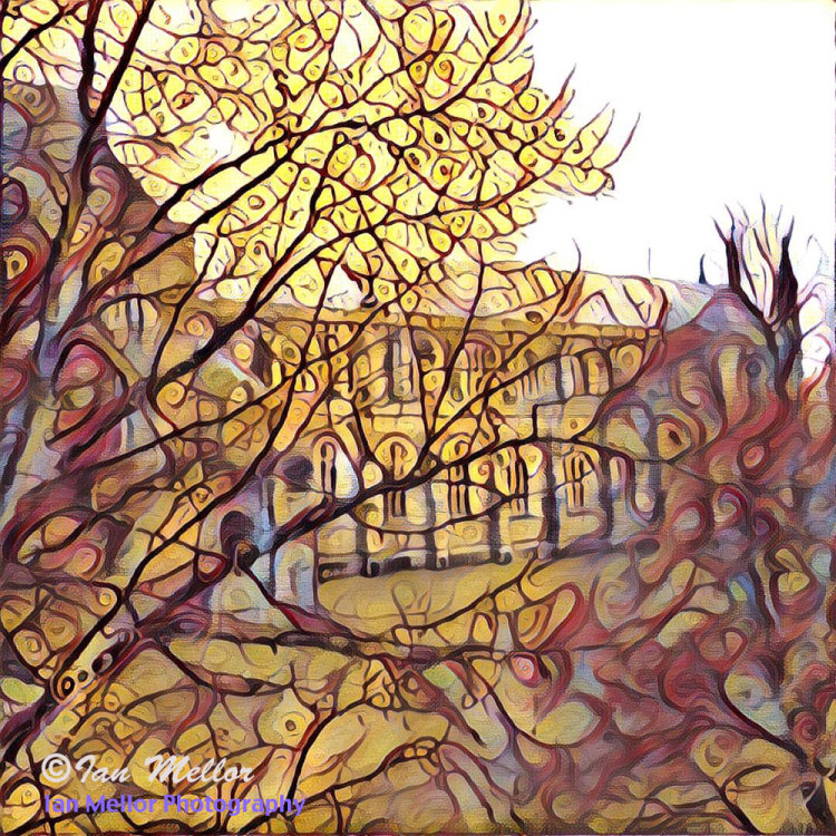 Winchester Cathedral through the Trees