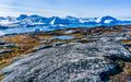 Icefjord (5)