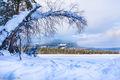 Frozen Lake (1)