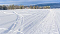 Frozen Lake (2)