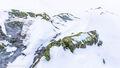Rock, Ice and Lichen