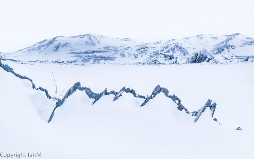 Kongsfjord (2)
