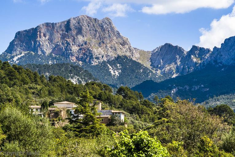 Sóller Valley (3)
