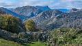 Western Picos