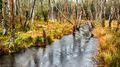 Killarney Creek