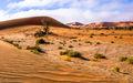 Namib (2)