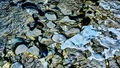 Abstract: Rock, ice and water