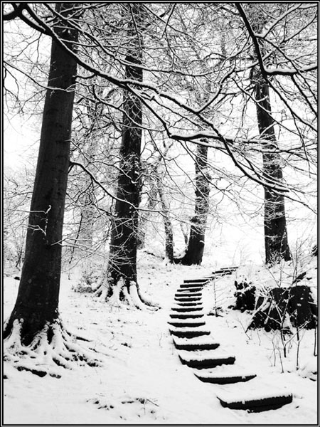 Steps in snow