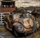 VW in warpaint