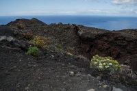 Volcanic landscape of Las Palmas de Canarias 1
