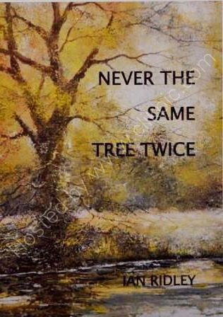 Never the Same Tree Twice
