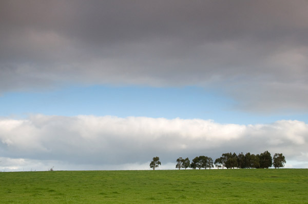 a farm vista