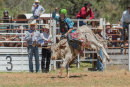 BODDINGTONRODEO2014-120-web