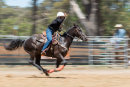 BODDINGTONRODEO2014-143-web