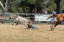 BODDINGTONRODEO2014-212-web