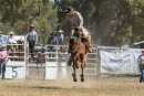 BODDINGTONRODEO2014-252-web