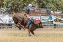 BODDINGTONRODEO2014-43-web