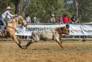 BODDINGTONRODEO2014-458-web