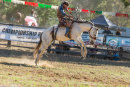 BODDINGTONRODEO2014-469-web