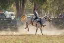 BODDINGTONRODEO2014-471-web