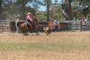 BODDINGTONRODEO2014-48-web
