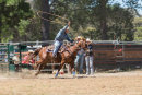 BODDINGTONRODEO2014-62-web