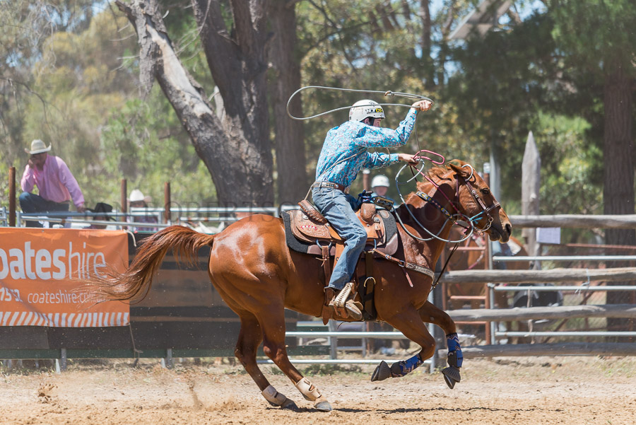 BODDINGTONRODEO2014-72-web