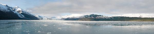 College Fiord panorama