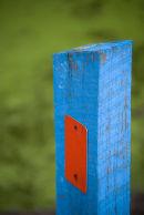 blue post