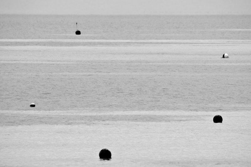 Buoys will be buoys...