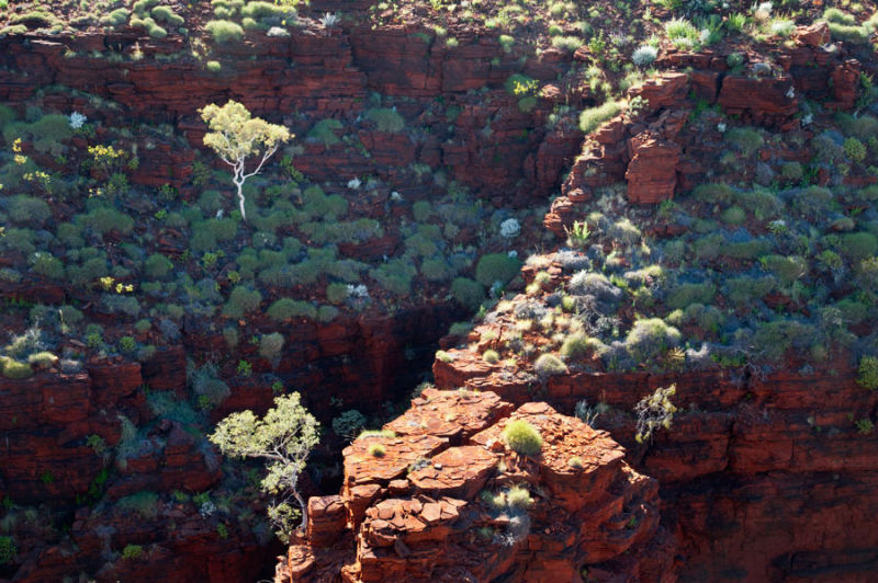 Junction Pool lookout, Karijini