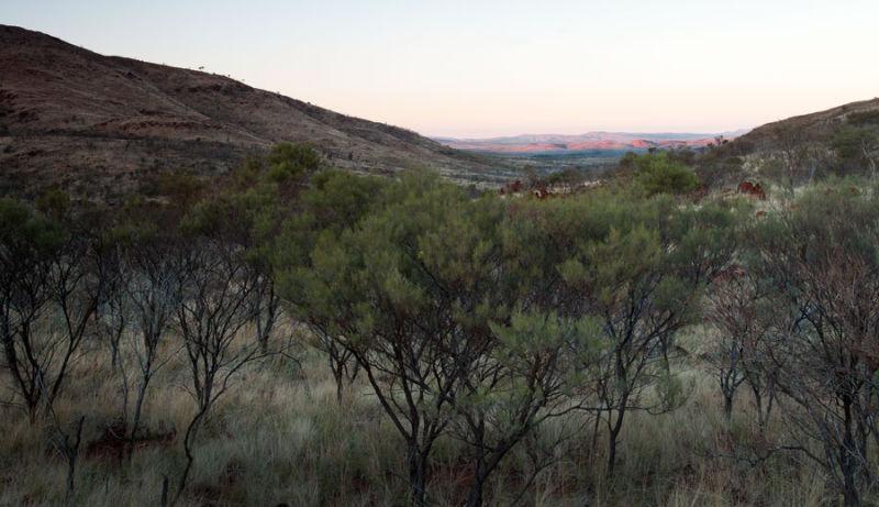 Karijini Drive view to Tom Price
