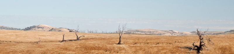 Tasmanian country panorama